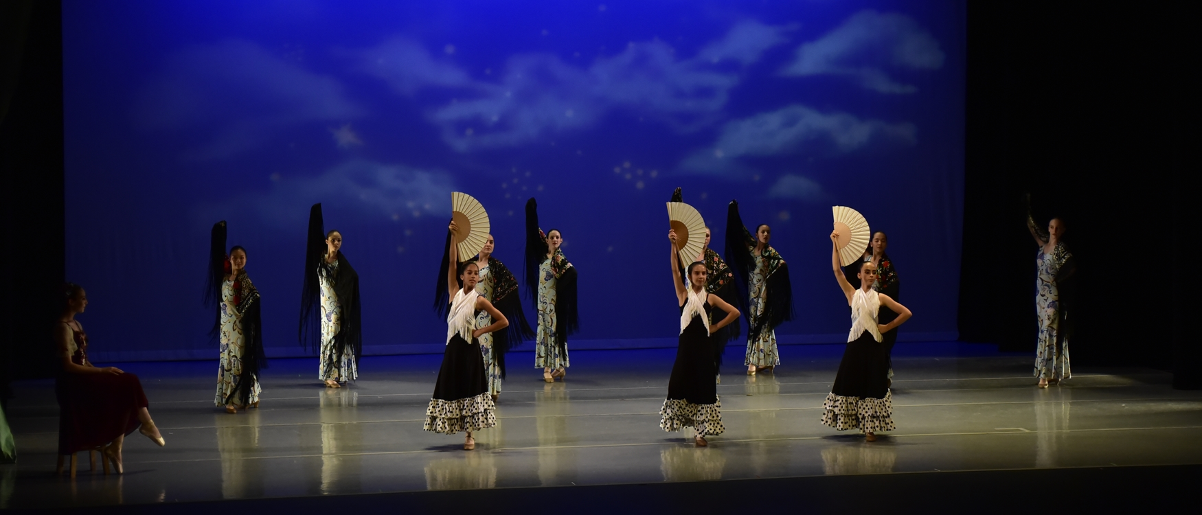 Scottsdale School of Ballet - Flamenco Performance Dance Classes for all ages
